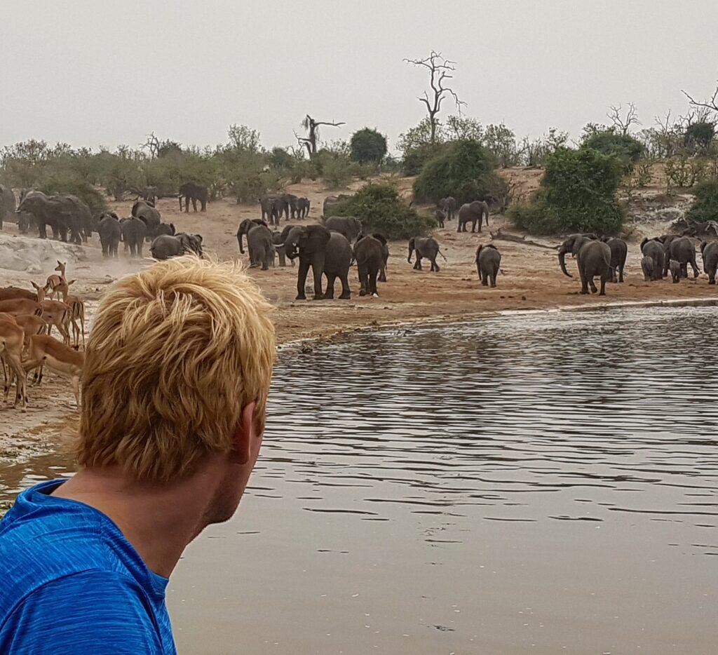 elephant_beach_david