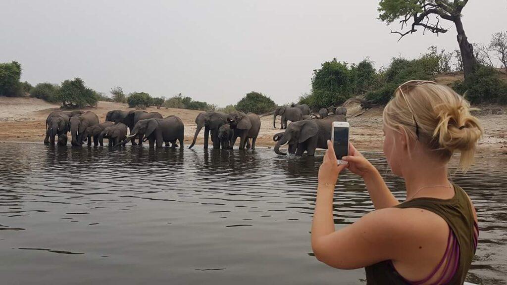 elephant_beach_maria