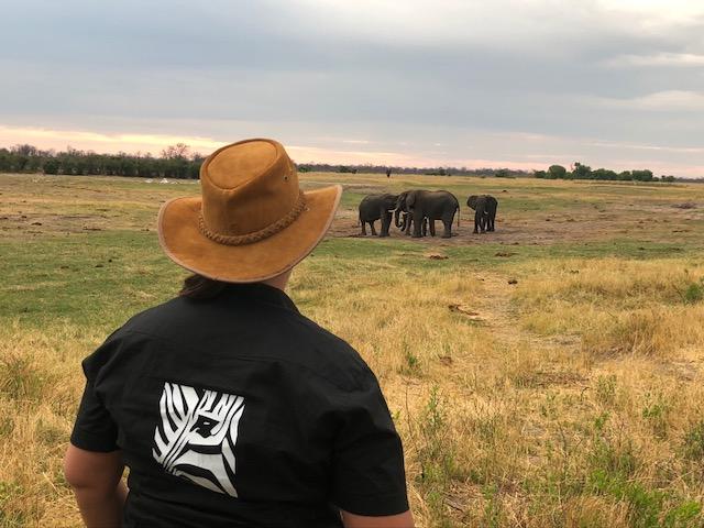 Bush walk Hwange Zimbabwe
