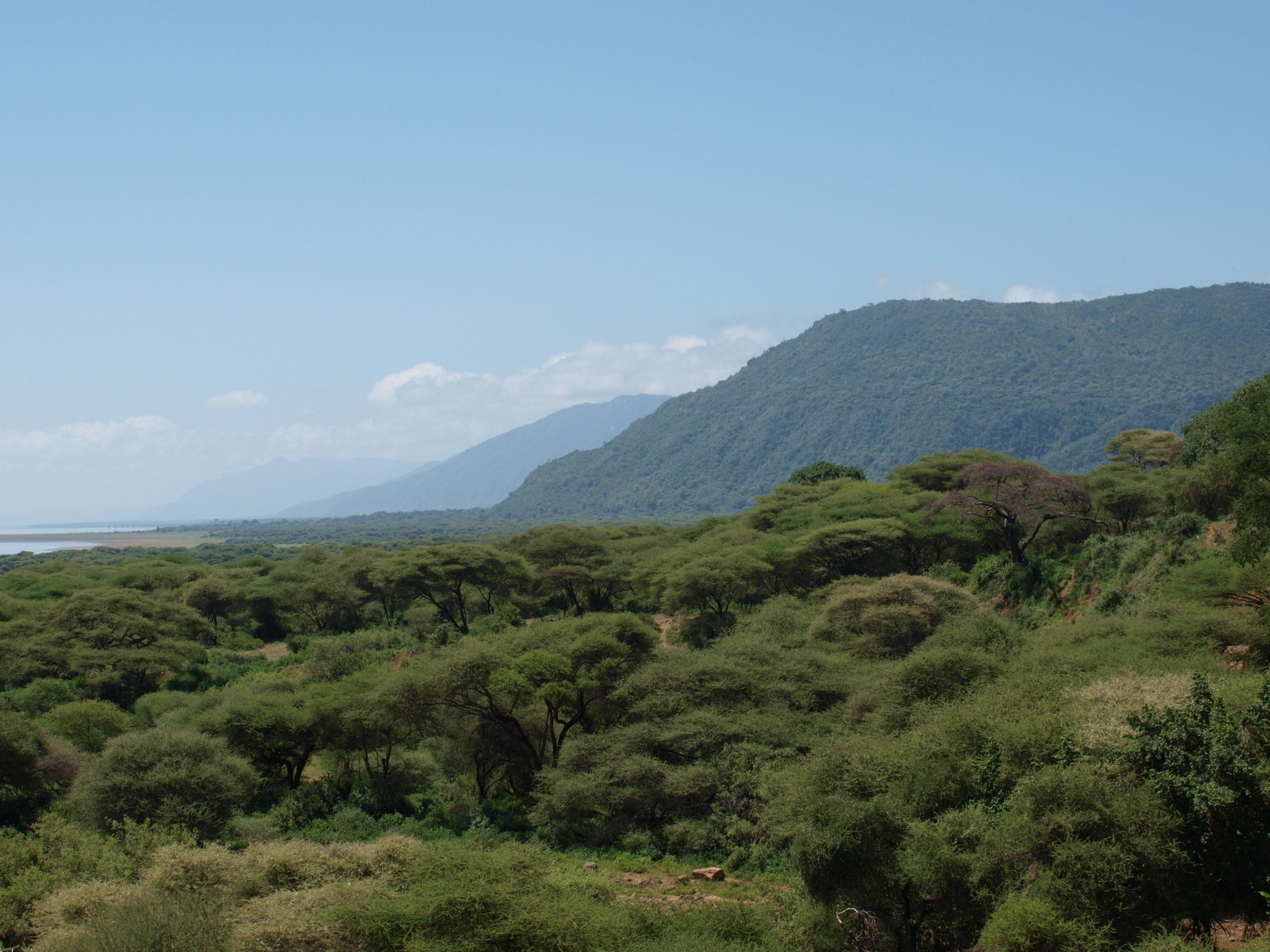 Lake Manyara Rift Valley escarpment